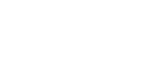 Parties and Weddings Plus